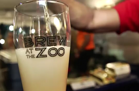 Brew at the Zoo 2011